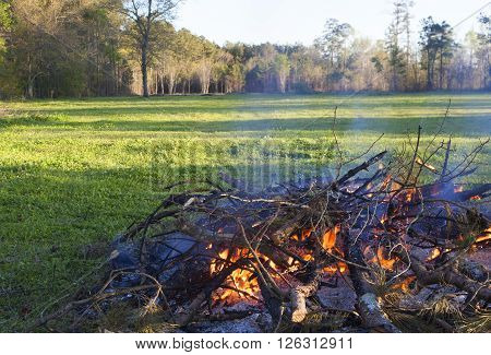 Brush and limbs being burned near a green field