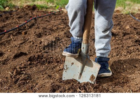 Closeup photo of man holding foot on shovel at garden