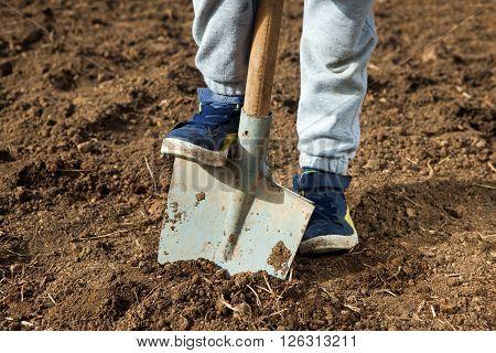 Closeup photo of boy holding foot on shovel at garden