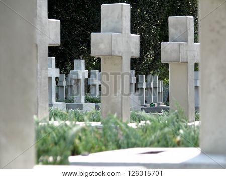 Memorial Crosses On The Graves