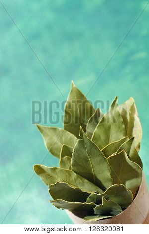 Bunch of a dried laurel (Laurus nobilis) leaves in the corner of photo with copy space.