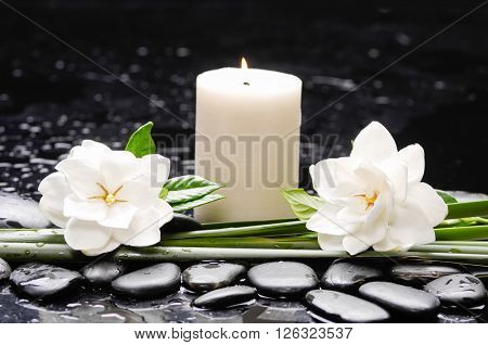 Still life with two gardenia with candleon therapy stones