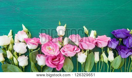 Fresh colorful flowers on rustic green wooden background