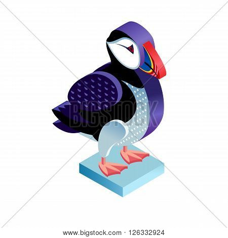 Bird deadlock. Illustration isometric icon. The vector image of the animal puffin in the original unusual style isolated on white background.