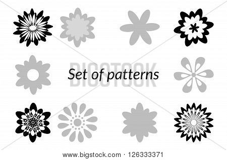 Floral Patterns, Design Elements, Black and Grey Silhouettes Isolated on White Background. Vector