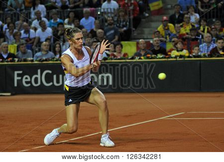 German Tennis Player Andrea Petkovic In Action