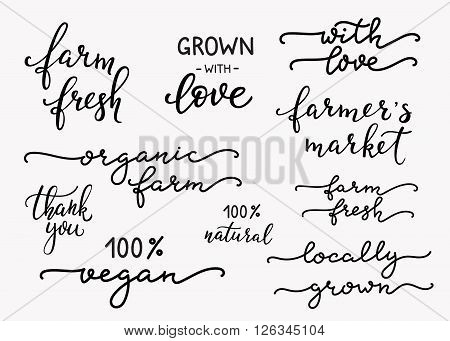 Hand written calligraphy style organic farm messages set. Typography label graphic design lettering element. Hand written calligraphy style signs. Package decoration element. Farmers market decor