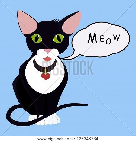 black cartoon green eyes sitting cat with Speech Balloon Isolated on blue