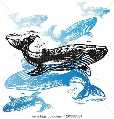 Vector Whale animals in abstract composition. Linocut whales in different colours on the white background