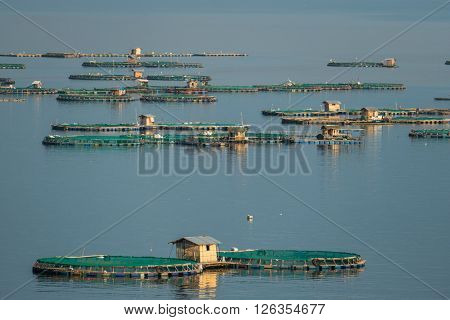 Aerial view of fish farm on Taal Lake