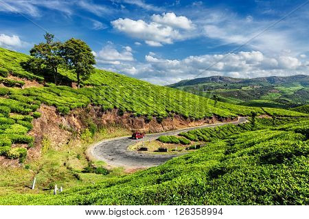 Kerala India travel background - car on road in green tea plantations in Munnar,  Kerala, India