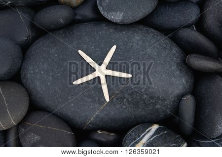 Abstract background with pebbles - round sea stones and starfish