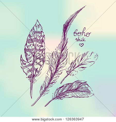Set of Boho Style  hand drawn feathers. Boho vector illustration of feathers. Tribal elements for poygraphy of boho wedding.