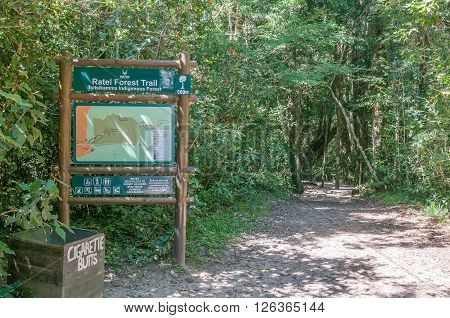 STORMS RIVER SOUTH AFRICA - FEBRUARY 28 2016: Start of the trail to the 1000 year old yellowwood tree in the Tsitsikama Forest near Storms River in the Eastern Cape Province