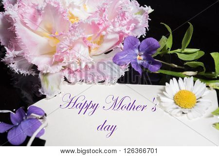 Tulip violet and daisy with card happy mother's day