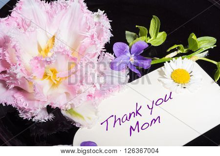 tulip violet and daisy with card Thank you mom