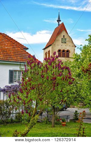 View to Clock Tower of Benedictine St Mary and Mark Abbey in Reichenau Island on Lake Constance. Reichenau is an island in Baden-Wurttemberg in Germany. It is under the UNESCO protection.