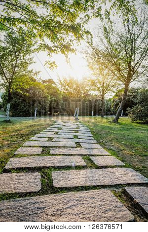 pathway under sunlight,in shanghai park.