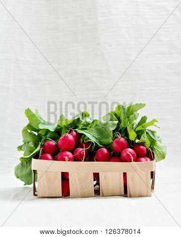 The red radish. Selective focus. The basket of vegetables.