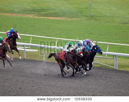 Horses Race Round Track With 3 In Front Running Neck And Neck