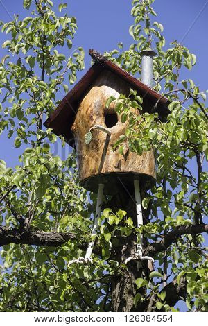 handmade wooden bird house at the plum tree