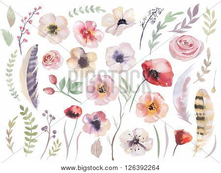 Watercolour boho flower set. Flloral vintage collection with leaves and flowers drawing watercolor. Spring or summer decoration design for invitation wedding or greeting cards. Hand drawn isilated on white.