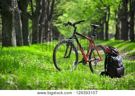 Mountain Bike, Backpack And Helmet On A Trail In The Forest
