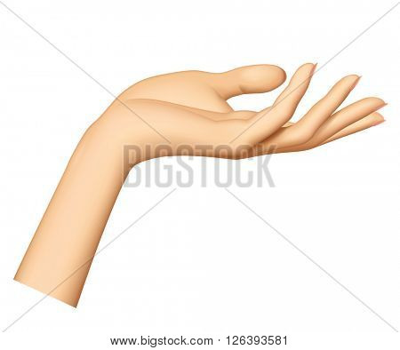 Woman's hand isolated on white background. Female hand stretching palm up. Vector illustration
