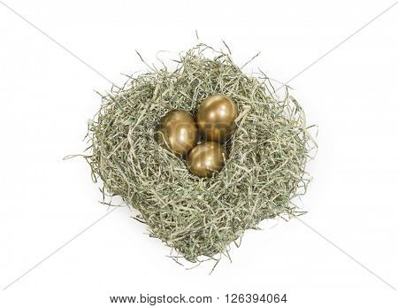 Golden nest eggs in bed of shredded US dollars.