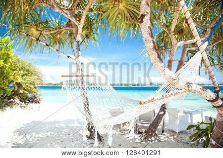 Empty hammock between palm trees at idyllic tropical beach