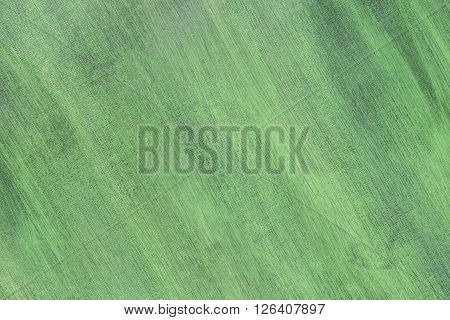 Abstract hand painted green canvas background texture.