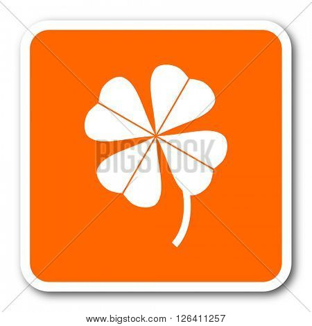 four-leaf clover orange flat design modern web icon