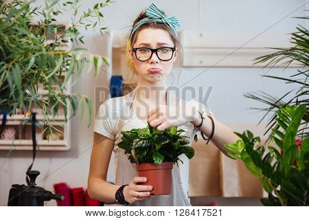 Sad lovely young woman florist in glasses standing and holding green plant in flowerpot in flower shop