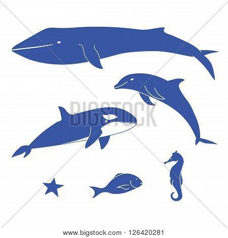 Sea animals. Set blue ocean animals. Marine mammals and fish. Vector set of marine animals.