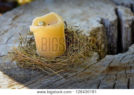 Candle and dried grass on a tree trunk