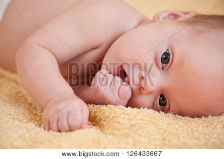Close up of newborn baby on yellow background