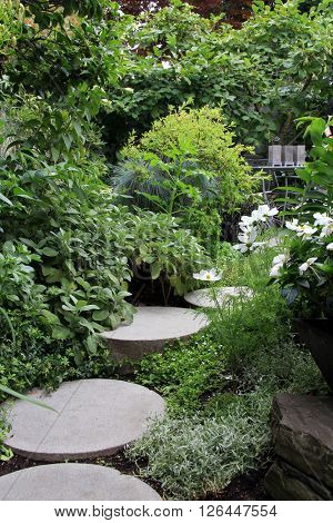Beautiful perennial garden path in summer.