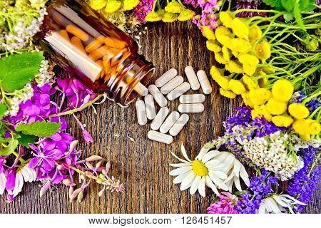 Capsules in brown jar open and on table, fresh flowers fireweed, tansy, chamomile, clover, yarrow, meadowsweet, mint leaves on background of wooden boards top