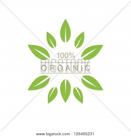 Organic Product Logo With Spiky Leaves Cool Flat Vector Design Template On White Backgeound