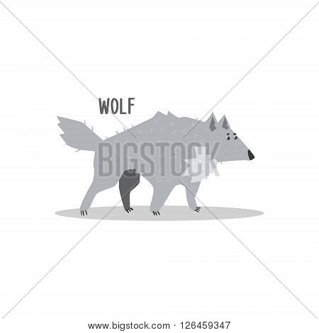 Wolf Drawing For Arctic Animals Collection Of Flat Vector Illustration In Creative Style On White Background