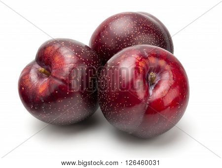 Fresh Red Plum
