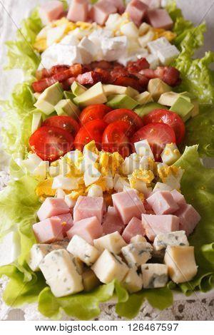 Traditional American Cobb Salad Macro. Vertical