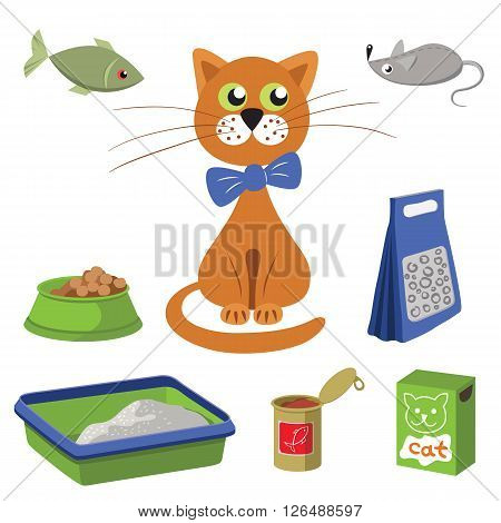 Cat and accessories for care. Vector illustration of separate objects, things on white background