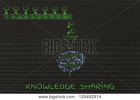 Circuit Brain Elaborating Ideas (lightbulbs), Knowledge Sharing