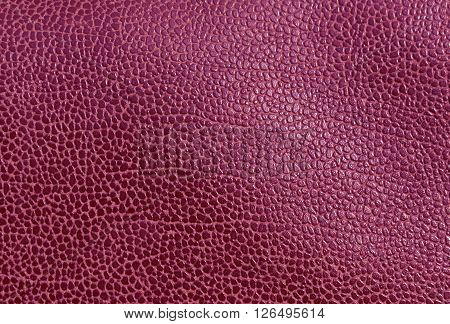 Abstract Magenta Leather Surface