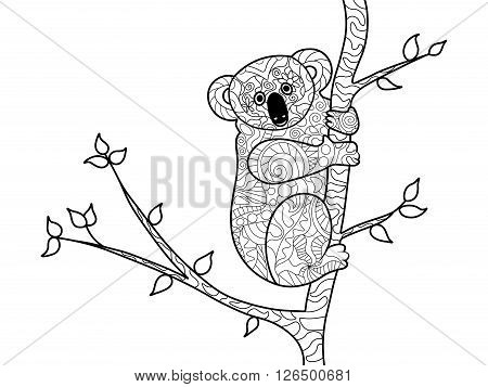 Koala bear on the tree coloring book for adults vector illustration. Anti-stress coloring for adult. Zentangle style. Black and white lines. Lace pattern
