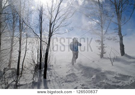 A person is breaking through blizzard on a sunny winter day.