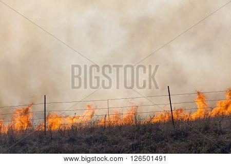 flames and smoke, burning prairie grass, Flint Hills, Kansas