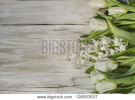 background spring flowers - white tulips and hyacinths on a light plywood