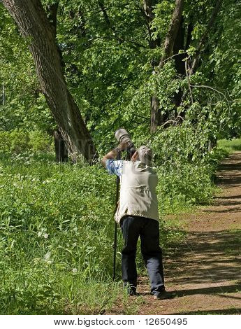 Photographer takes photo standing in park or forest